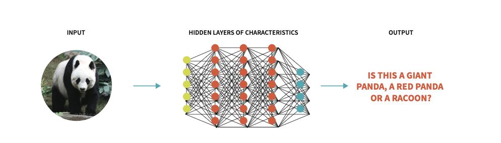Hidden Layers
